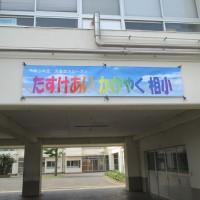 IMG_8583